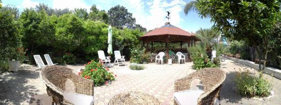 Villa I Nidi B&B: Angolo Relax e Colazione