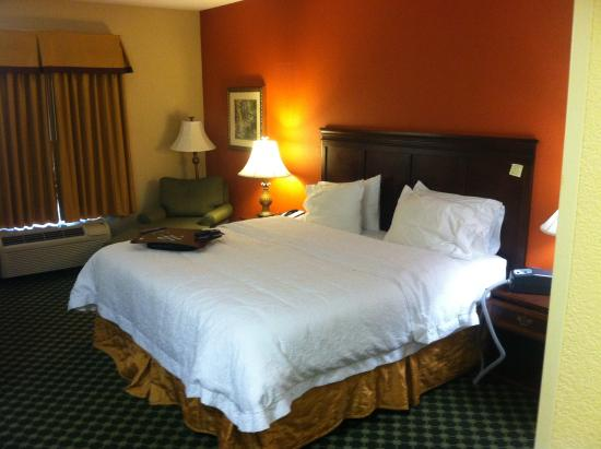 Hampton Inn Atlanta - Lawrenceville I-85 Sugarloaf : King Room