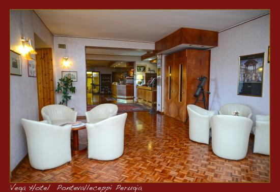 Vega Hotel : Hall