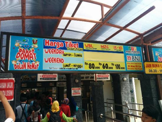 Harga Tiket Di Wbl Wisata Bahari Lamongan Di Jawa Timur