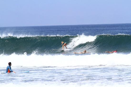 Chica Brava Surf Retreat: Beautiful waves