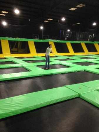 Powell, TN: Trampoline Room