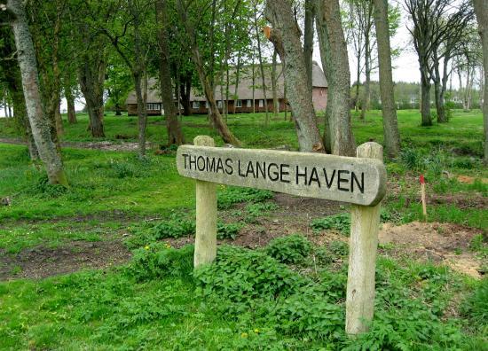 Thomas Lange Haven