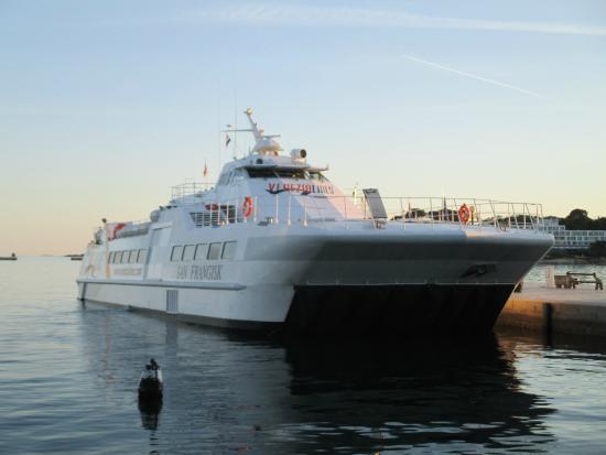 Venezia Lines: Catamaran