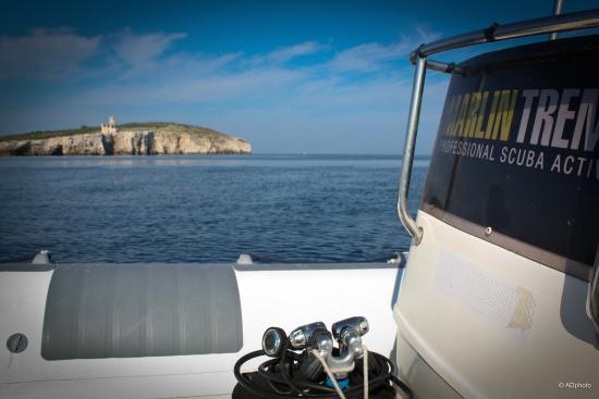 San Domino, Italien: MARLINTREMITI > Immersioni, Escursioni. Assistenza Booking - www.marlintremiti.com