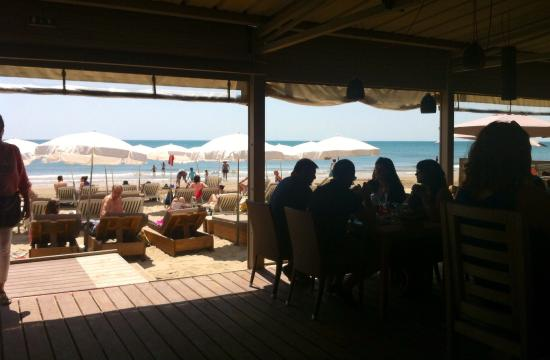 Palm Ray Plage: view from reception