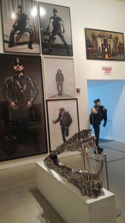 Bass Museum of Art : Oi