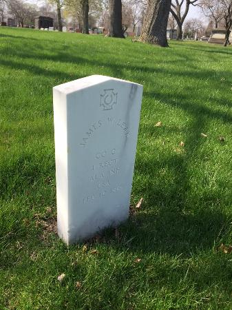 Oak Woods Cemetery: Alabama soldier grave