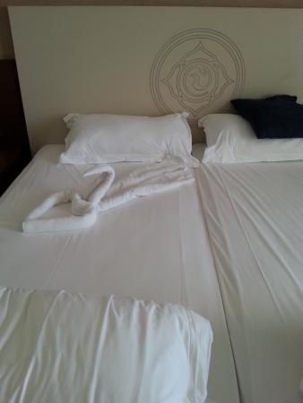 Side Alegria Hotel & Spa Photo