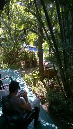 Bungalows Guesthouse : vue du bungalow