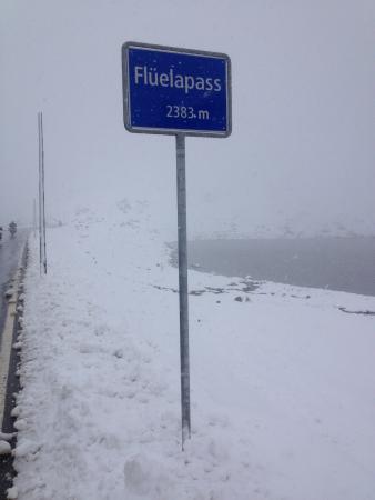 Fluelapass