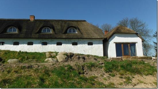 Springbakgaard B&B : Looking up at the farmhouse