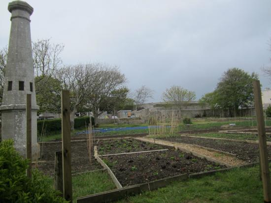 Governor's Community Garden