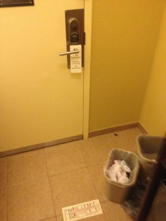 Rosen Inn: Cockroach at room 516