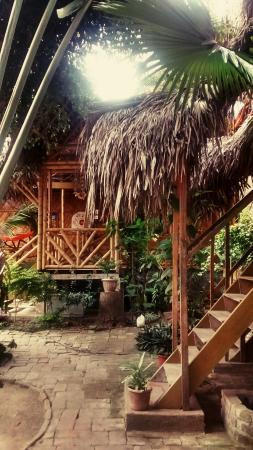 Sol Inn: Jardín