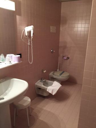 Hotel Diana : Dusche/WC