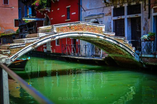 Canal in Cannaregio, Venezia. #venezia #adamtasimages