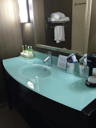 Holiday Inn Express Hotel & Suites West Coxsackie: Very New Clean Bathrooms