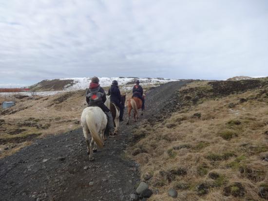 Eld Hestar Horseback Tours : Ausritt