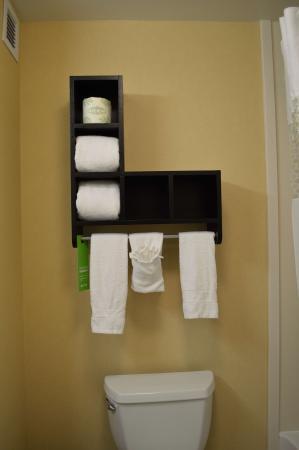 """Hampton Inn & Suites Mahwah: Interesting towel """"rack"""" but not very practical"""