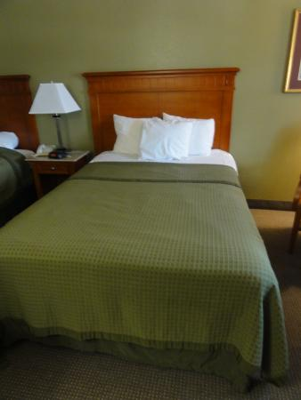 Rodeway Inn & Suites : Cotton, I love it!  All very comfy.  And everything seemed new (furniture, linens, appliances)