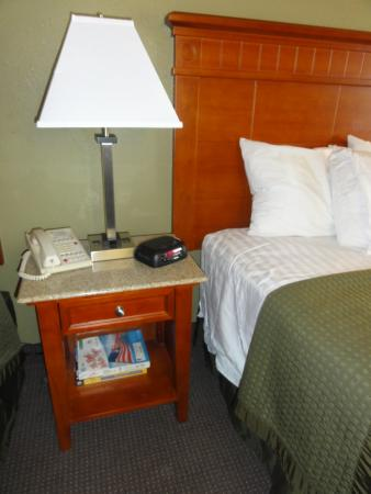 Rodeway Inn & Suites : Granite top on the nightstands
