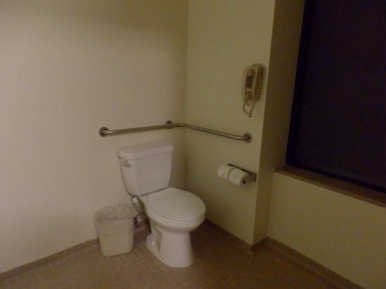Kawada Hotel: トイレ。バスルームと繋がってます