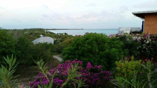 Shannas Cove Resort Restaurant