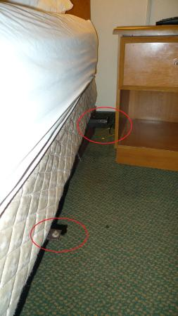 Days Inn Rawlins: Metal/Plastic jutting out from bed frame