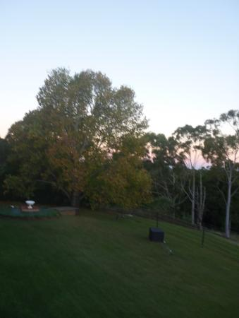 Montville Holiday Apartments: Autumn colour at sunset.
