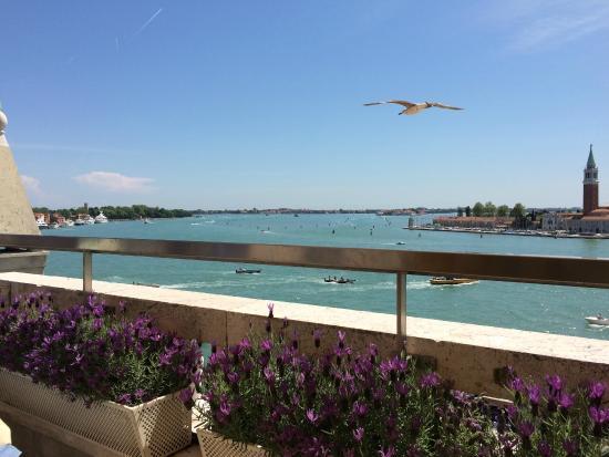 la terrazza - Picture of Restaurant Terrazza Danieli, Venice ...
