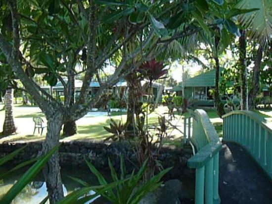 Truk Blue Lagoon Resort 사진