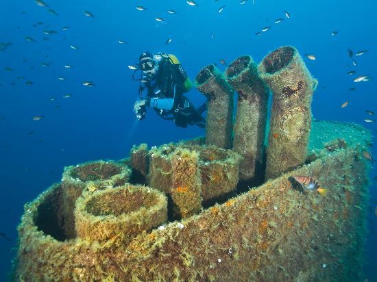 Sliema, Malta: Diving Wreck
