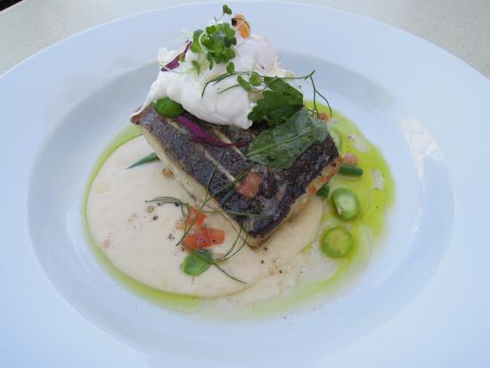 Catharina's Restaurant at Steenberg: The fish was mouthwatering
