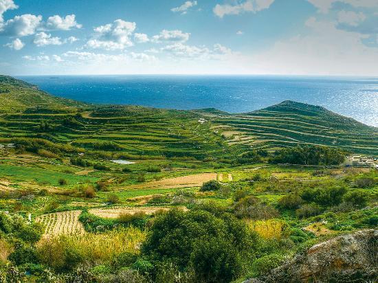 Валлетта, Мальта: Green Valley