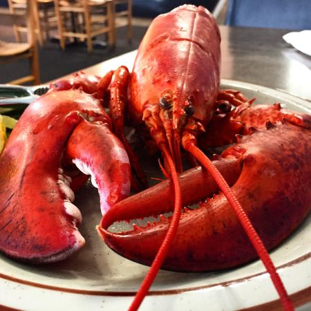 Royal Crab Calabash Seafood And Steak Buffet So Good