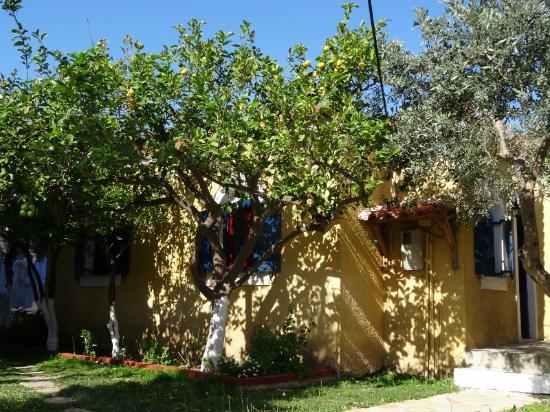 Evagelistria Apartments: Huisje in de tuin