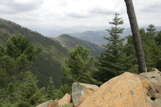Los Reales de Sierra Bermeja: Mountain view