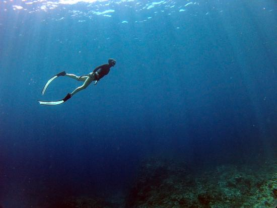Apnea Koh Phangan Freediving School