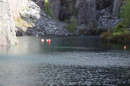 Vivian Diving centre