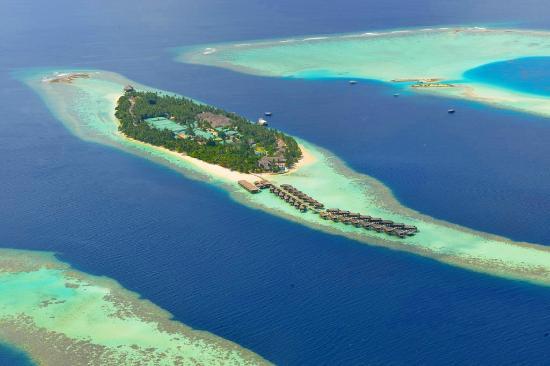 Best Island Ever