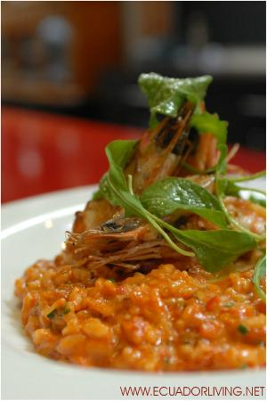 Lua Restaurant, shrimp risotto
