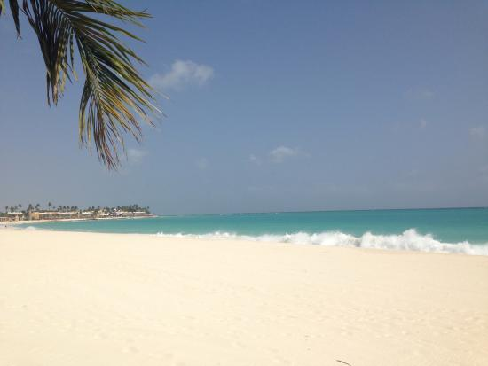 A holiday to remember picture of divi aruba all - Divi all inclusive ...