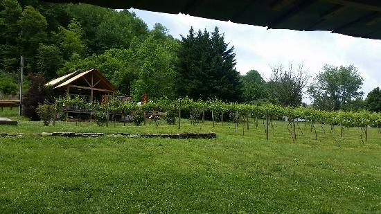 Calaboose Cellars: Stopped in for a beer. Early May.