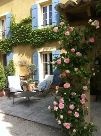 Le Mas au Portail Bleu : Magnifique rosier Ronsard