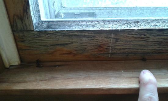 Ladd Brook Inn: Dirty, rotten window