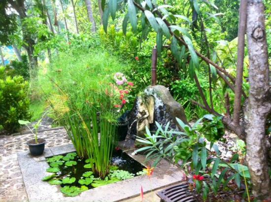 Shambala Oceanside Retreat: Private Fountain from Temple bungalow