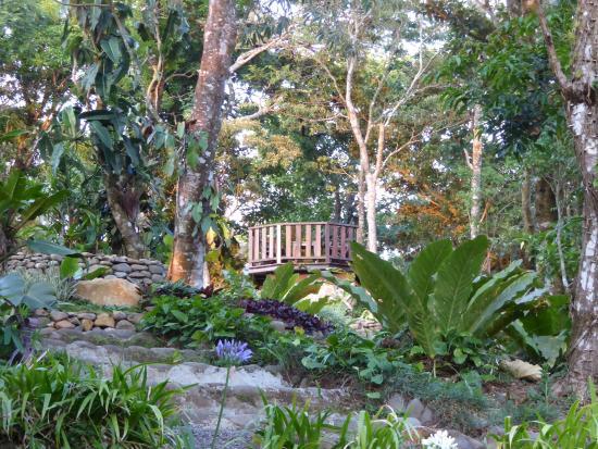 Monteverde Lodge U0026 Gardens: Superb Gardens