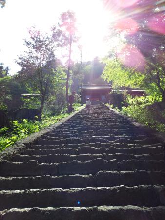Myogi Shrine : 参道の階段