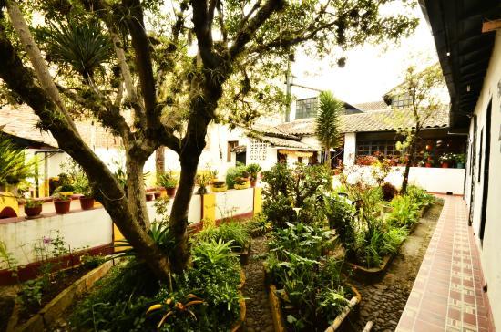 Hostal Riviera-Sucre : Patio Posterior